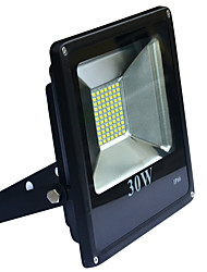 Jiawen 30W 2400-2800lm  IP66 77-5730SMD Cool white/warm white LED Floodlight - Black (AC 220V)