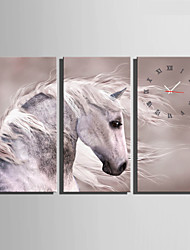Modern/Zeitgenössisch Tiere Wanduhr,Rechteckig Leinwand 30 x 60cm(12inchx24inch)x3pcs/ 40 x 80cm(16inchx32inch)x3pcs Drinnen Uhr
