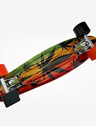 baratos -Cruisers skate PP (Polipropileno) Laranja Laranja/preto Flor