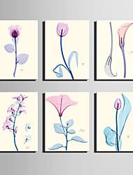 cheap -E-HOME® Stretched Canvas Art Transparent Color Flowers Series Decoration Painting MINI SIZE One Pcs