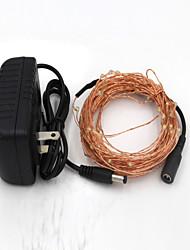 preiswerte -10m-100-geführte warme weiße / kühle weiße Licht Kupferdraht-Lampe und Netzadapter (220-12v)