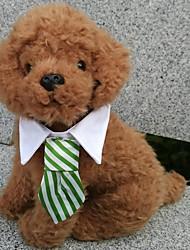 economico -Cane Cravatta/Papillon Abbigliamento per cani A quadri Nero Caffè Rosso Verde Arcobaleno Cotone Costume Per animali domestici Per uomo