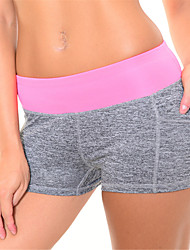 cheap -Women's Elastic Quick Dry Sports Shorts Fitness Running Short Pants