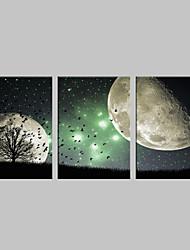 e-home® esticado levou arte impressão em tela o efeito do flash cena da noite LED piscando set impressão de fibra óptica, de 3 de