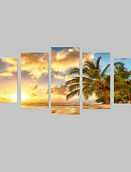 cheap -5 Panels Sunny Beach with Trees Picture Print on Canvas Unframed