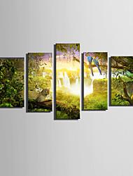 Недорогие -Холст Set Пейзаж / Животное Modern,5 панелей Холст Вертикальная Печать Искусство Декор стены For Украшение дома