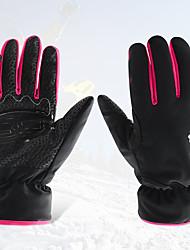 Недорогие -лыжные перчатки Полный палец Жен. Спортивные перчаткиСохраняет тепло / Анти-скольжение / Водонепроницаемый / Ветронепроницаемый /