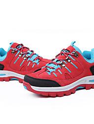 Sneakers Scarpe da trekking Scarpe da alpinismo Per donnaAnti-scivolo Anti-Shake Ammortizzamento Ventilazione Impatto Asciugatura rapida