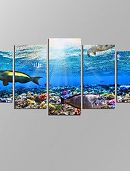 VISUAL STAR®Underwater Landscape Picture Giclee Artwork 5 Panels Modern Home Wall Decoration Framed Canvas Print Ready to Hang