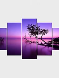 Estampados de Lonas Esticada Floral/Botânico Estilo Moderno,5 Painéis Tela Qualquer Forma Impressão artística Decoração de Parede For