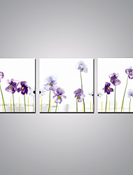 cheap -Stretched Canvas Print Floral/Botanical Modern, Three Panels Canvas Horizontal Print Wall Decor Home Decoration