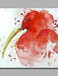cheap -Hand-Painted Animal Long mouth Red Bird  Ready To Hang Modern One Panel Canvas Oil Painting For Home Decoration