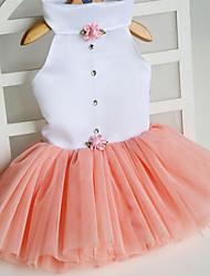 abordables -Chat Chien Robe Vêtements pour Chien Princesse Orange Fuchsia Vert Rose Tissu Costume Pour les animaux domestiques Mignon