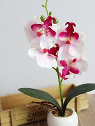 economico -1 Ramo Fiori secchi Orchidee Prugna Fiori da tavolo Fiori Artificiali