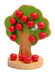 Недорогие -Конструкторы / Обучающая игрушка Apple Магнитный / Классический Мальчики Подарок