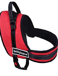 Недорогие -Собака Ремни Регулируется / Выдвижной Дышащий Безопасность Тренировки Для машины Бег Однотонный Ткань Черный Красный Синий