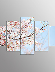 cheap -Stretched Canvas Print Floral/Botanical Modern,Five Panels Canvas Any Shape Print Wall Decor For Home Decoration