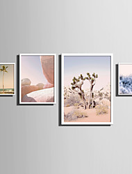 cheap -E-HOME® Framed Canvas Art   Simple Natural Scenery And Plant Series (5) Theme Series Framed Canvas Print One Pcs