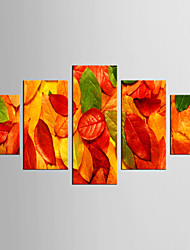Landscape Modern Pastoral,Five Panels Canvas Any Shape Print Wall Decor For Home Decoration