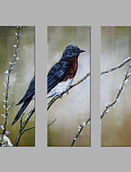 cheap -IARTS® Hand Painted Modern Abstract Bird on the Winter Flower Tree Set of 3 with Stretched Frame Picture For Home Decoration Ready To Hang