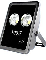 abordables -La espada 100w ip65 llevó el proyector llevado paisaje de la inundación del reflector (ac85-265v)