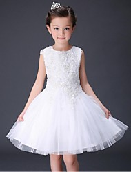 Ball Gown Short / Mini Flower Girl Dress - Organza Sleeveless Jewel Neck with Applique by YDN