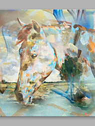 Недорогие -Ручная роспись Животные Квадратный, Высокое качество холст Hang-роспись маслом Украшение дома 1 панель