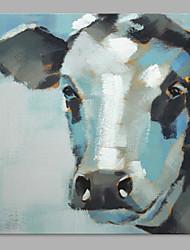 Peint à la main Animal Artistique Un Panneau Toile Peinture à l'huile Hang-peint For Décoration d'intérieur