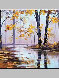 Pintados à mão Paisagem Artistíco Inspirado da Natureza Ao ar Livre 1 Painel Tela Pintura a Óleo For Decoração para casa