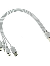 abordables -Cwxuan USB 2.0 Cable, USB 2.0 to USB 3.1 Tipo C Mini USB Micro USB 2.0 Cable Macho - Macho 0,3 m (1 pie)