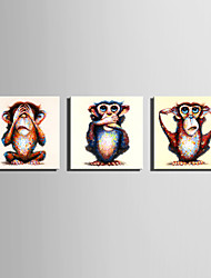 Mini Size E-HOME Oil painting Modern Funny Monkey Pure Hand Draw Frameless Decorative Painting Set of 3