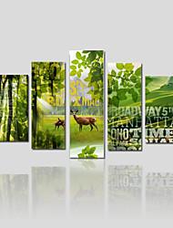 economico -Stampa trasferimenti su tela Cinque Pannelli Tela Stampa Decorazioni da parete For Decorazioni per la casa