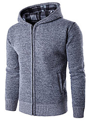 Men's Casual/Daily Regular Pullover,Solid Hooded Long Sleeves Others Spring Winter Medium Micro-elastic