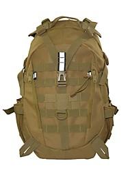 cheap -35 L Backpacks Camping / Hiking Hiking Mountaineering Cloth Nylon