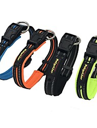 cheap -Dog Collar Reflective Solid Nylon Black Orange Green Blue
