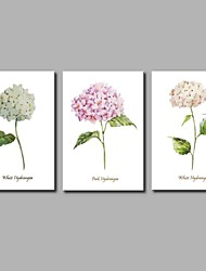 Peint à la main A fleurs/Botanique Artistique Fleur Inspiré de la nature Rustique Moderne/Contemporain Bureau / Affaires Cool Noël Nouvel