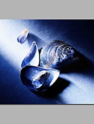 preiswerte -shell handgemalte zeitgenössische ölgemälde moderne kunstwerk wandkunst für raumdekoration