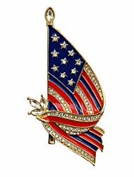 Муж. Жен. Броши Стразы Формальная Искусственный бриллиант Сплав Флаг Бижутерия Назначение Повседневные