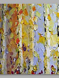 手描きの 花柄/植物の 近代の 1枚 キャンバス ハング塗装油絵 For ホームデコレーション