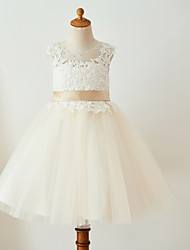 cheap -Ball Gown Knee Length Flower Girl Dress - Lace Tulle Sleeveless Jewel Neck with Beading Buttons Belt by LAN TING Express