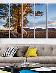 cheap -Canvas Print Rustic Modern,Five Panels Canvas Vertical Print Wall Decor Home Decoration