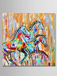 Недорогие -Hang-роспись маслом Ручная роспись - Животные Животные Простой Modern холст