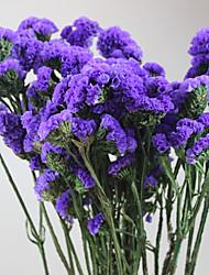 cheap -Wedding / Party Dried Flower Wedding Decorations Floral/Botanicals / Floral Theme / Still Life / Romance / Fantacy / Birthday / Friends /