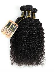Недорогие -3 Связки Бразильские волосы Kinky Curly Натуральные волосы Человека ткет Волосы Ткет человеческих волос Расширения человеческих волос / 8A / Кудрявый вьющиеся
