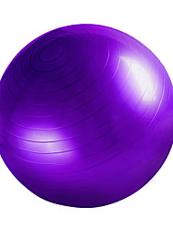 cheap -55cm Exercise Ball Fitness Ball/Yoga Ball Yoga Gym Training Balance PVC
