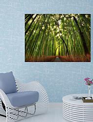 Недорогие -Наклейка на стену Декоративные наклейки на стены Напольные наклейки - 3D наклейки Пейзаж Цветочные мотивы / ботанический Положение