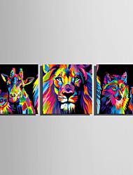 abordables -Imprimé Impressions sur toile roulées - Abstrait Animaux Moderne Trois Panneaux