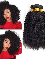 Недорогие -3 Связки Перуанские волосы Кудрявый Натуральные волосы Человека ткет Волосы / Пучок волос / One Pack Solution 8-28 дюймовый Нейтральный Естественный цвет Ткет человеческих волос Машинное плетение