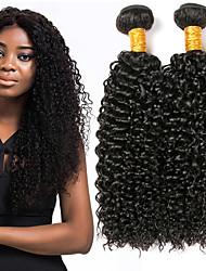 Недорогие -3 Связки Бирманские волосы Kinky Curly 8A Натуральные волосы Человека ткет Волосы Пучок волос Накладки из натуральных волос 8-28 дюймовый Естественный цвет Ткет человеческих волос