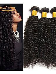 Недорогие -3 Связки Бразильские волосы Кудрявый 8A Натуральные волосы Человека ткет Волосы Удлинитель Пучок волос 8-28 дюймовый Естественный цвет Ткет человеческих волос Машинное плетение Лучшее качество 100